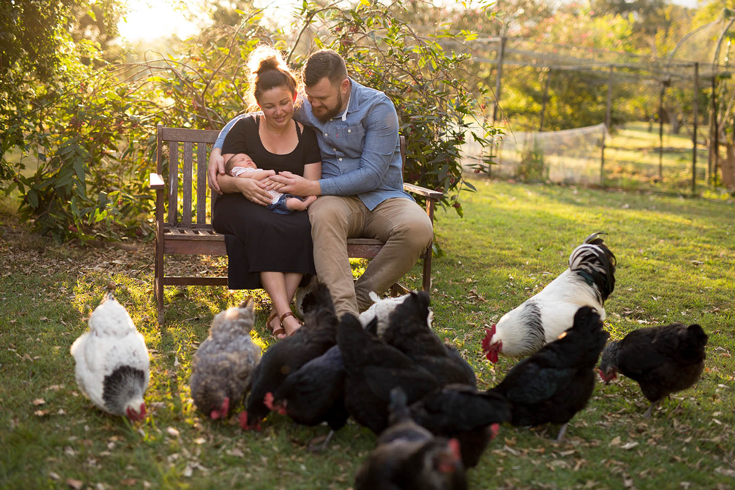 family, newborn, chickens, family photography, Alice Payne photography