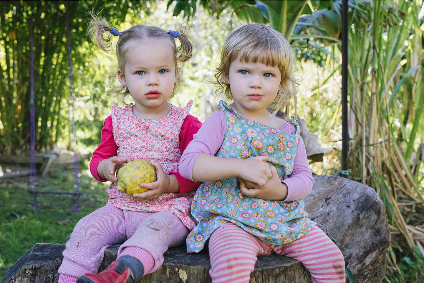 Twins, children, childhood, family photography, Alice Payne photography