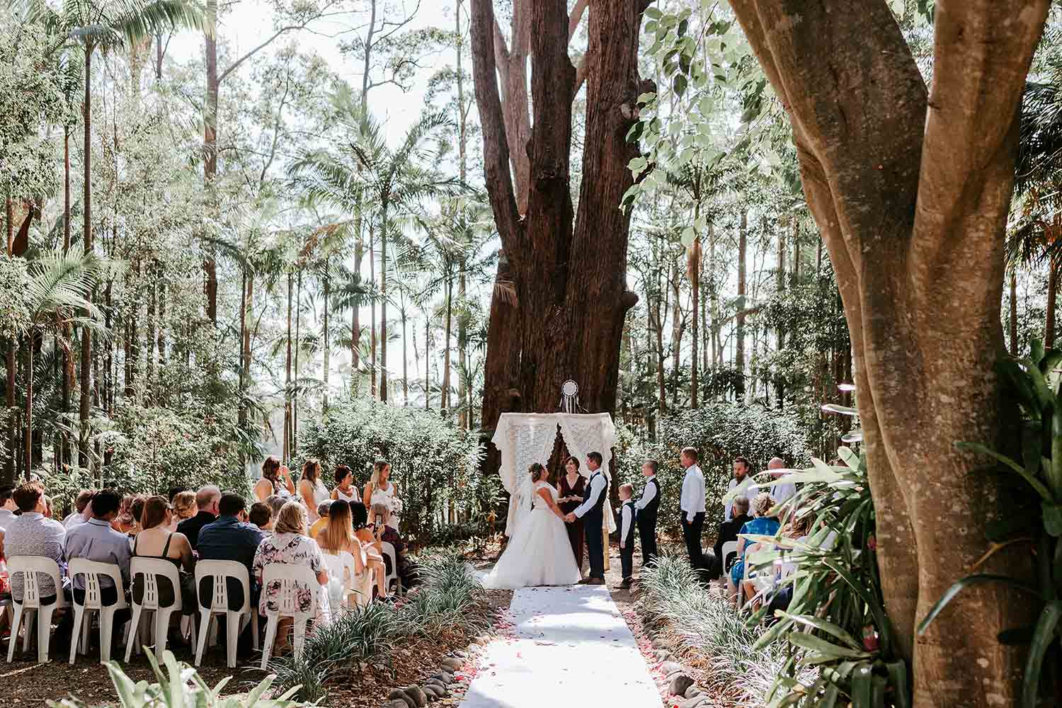 Ceremony in a rainforest bride and groom hold hands face each other celebrant is smiling - Bonville golf resort weddings - Coffs harbour wedding photographer - Bellingen wedding photographer - Nambucca Valley wedding photographer